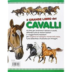 Il grande libro dei cavalli
