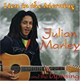 Songtexte von Julian Marley - Lion In The Morning
