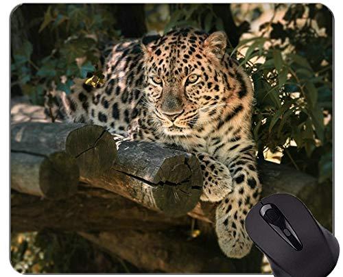 Kundenspezifische ursprüngliche Leopard-Reihen-Mausunterlage, rutschfeste Gummibasis Mousepad des Natur-wilden Leoparden