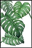 """JUNIQE® Bild mit Rahmen 20x30cm Blätter & Pflanzen - Design """"Tropical No.2"""" (Format: Hoch) - Wandbilder, Gerahmte Bilder & Gerahmte Poster von unabhängigen Künstlern - Botanische Kunst mit Pflanzen - entworfen von typealive"""