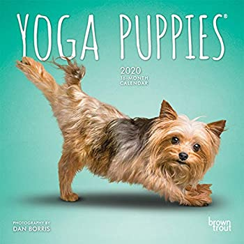 Yoga Puppies 2020 Calendar