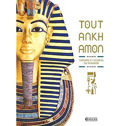 Toutankhamon: Trésors et secrets du pharaon