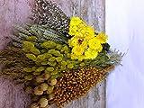Pack Flores Secas Amarillo. PORTES GRATIS