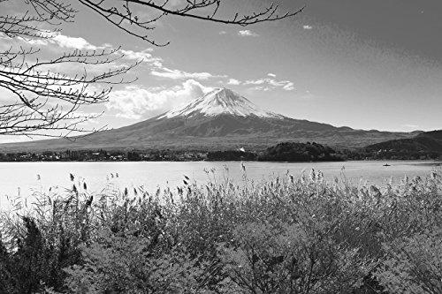 Bilderdepot24 Vlies Fototapete - Fuji im Herbst - schwarz Weiss - 150x100 cm - mit Kleister - Poster - Foto auf Tapete - Wandbild - Wandtapete - Vliestapete (Schwarz Und Weiß-unkraut-poster)