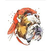Suchergebnis Auf Amazonde Für Bulldogge Malen Nach Zahlen