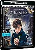 Animales Fantásticos Y Dónde Encontrarlos (4K Ultra HD + Blu-ray + Copia Digital) [Blu-ray]
