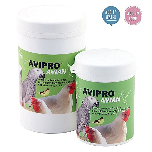 Vetark Avipro Avian Prebiotic & Probiotic Parrot Supplement