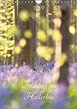 Frühling im Hallerbos (Wandkalender 2019 DIN A4 hoch): Naturschauspiel der blühenden Hyacinthen im Stadtwald von Halle, Belgien. (Monatskalender, 14 Seiten ) (CALVENDO Natur)