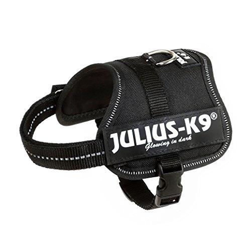 Julius-K9, 162P-BB2, K9-Powergeschirr, Größe: Baby 2, schwarz