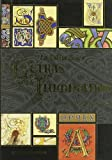 La Biblia de las letras iluminadas/ The Bible Of The Illuminated Letters