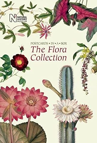 The Flora Collection: Postcards in a
