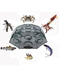 plié Filet de pêche Épuisette, portable Poisson appâts crevettes Minnow Crab Cast Piège à maille pour activités de plein air, 8 sides 16 Holes