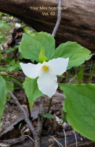 Your Mini Notebook! Vol. 62: the beauty of the white trillium along the forest path