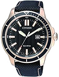 Citizen Herren-Armbanduhr Analog Quarz Textil AW1523-01E