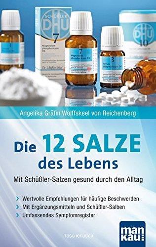 Die 12 Salze des Lebens - Mit Schüßler-Salzen gesund durch den Alltag: Wertvolle Empfehlungen für häufige Beschwerden. Mit Ergänzungsmitteln und Schüßler-Salben. Umfassendes Symptomregister