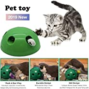 Cat Toy Pet Play Toys, Mouse Interactive Cat Toy Automatic Tease Cat Toy Funny Carnival Game Kitty Cat, Pet En