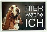 Hier wache ich - Basset Hound - Hund Dog 20x30 cm Blechschild 1558