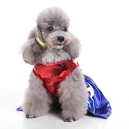 Pet Kostüm dexinghaoye Fashion Star Eagle Farbe blockierender weiblich Hund Weste Kleid Haarband Pet Kostüm
