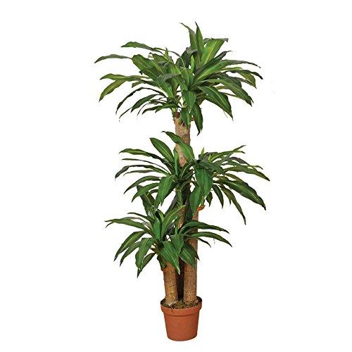 Planta artificial drácena 145 cm altura, Catral 74010006