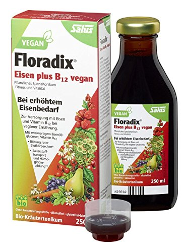 Floradix Eisen + B12 Bio-Tonikum (0.25 L) -