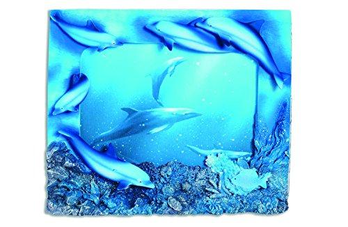 Katerina Prestige-Marco Fotos 5Delfines Coral, me0353