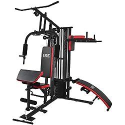 ISE 50en1 Station de Musculation Appareil de Musculation Fitness Multifonction Home Gym Station avec Poids,Entraînement de Bras/Épaules/Poitrine/Abdomen/Dos & Jambe, SY-4009