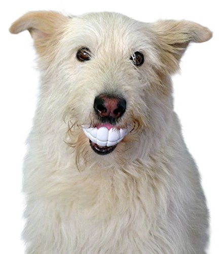 Artikelbild: Moody Pet Humunga Hundespielzeug Chomp Hundespielzeug