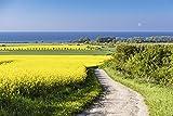 Artland Qualitätsbilder I Alu Dibond Bilder Alu Art 60 x 40 cm Landschaften Felder Foto Blau C6XF Blick auf die Ostsee in der Nähe von Kühlungsborn