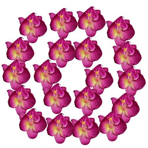 Magideal 20pcs 3d fiori di seta orchidea testa per decorazione della festa nuziale - rosso viola