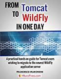 From Tomcat to WildFly in one day (English Edition)