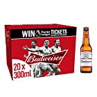 Budweiser Lager Beer Bottles, 20 x 300ml