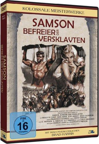 Bild von Samson - Befreier der Versklavten