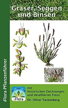Gräser, Seggen und Binsen (iFlora Pflanzenführer 4) von [Tackenberg, Oliver]