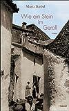 Wie ein Stein im Geröll: Roman von Maria Barbal (2007) Gebundene Ausgabe