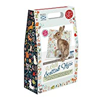 Crafty Kit Company Wild Scottish Hare Needle Felting KitContaining 100% wool, Felting Needles, High Density Felting Sponge, Pipe Cleaners, Wire, Glass Eyes and Clear Colour Instructions