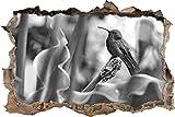 Hummingbird dans son habitat naturel Art B & W percée de mur en 3D look, mur ou format vignette de la porte: 62x42cm, stickers muraux, sticker mural, décoration murale