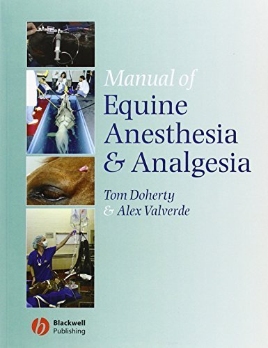 Manual of Equine Anesthesia and Analgesia by Wiley-Blackwell (2006-08-04)