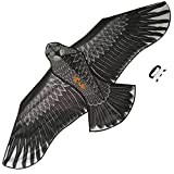 Large Eagle Kite (Black) for Kids and Adults - Best Reviews Guide
