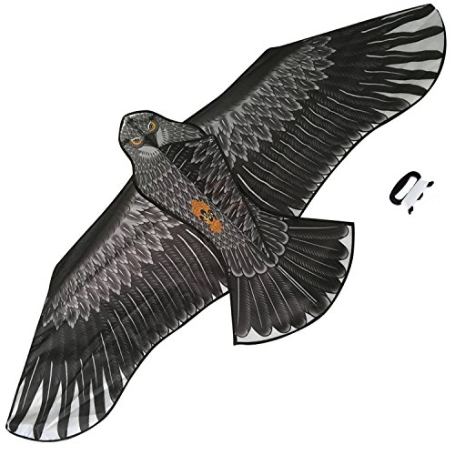 large-eagle-kite-black-colour-for-kids-and-adults-huge-wingspan-and-lifelike-design-easy-to-assemble