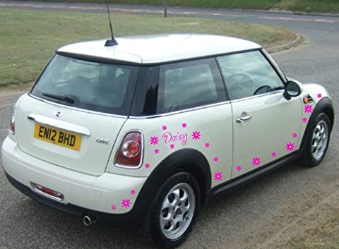 Taille 10cm Hauteur par Max 60cm Largeur personnalisé couleur rose Daisy fleurs avec nom, autocollant pour voiture, mur, voiture, vinyle, n'importe quel nom, van, mini, Audi, après l'achat envoyez-nous un message avec votre nom