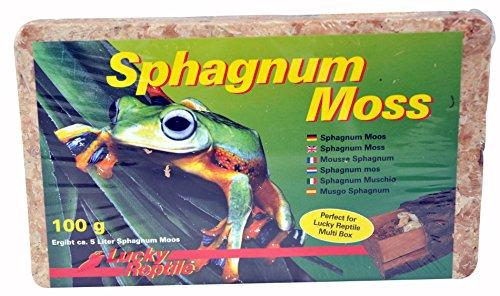 lucky-reptile-sm-100-sphagnum-moss-ziegel-100-g-terrarienmoos