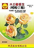 IBA Indol-3-buttersäure Indol-Buttersäure 98% 5 Gramm Wasserlöslich Pflanzenwachstumsregulator Gewebekultur