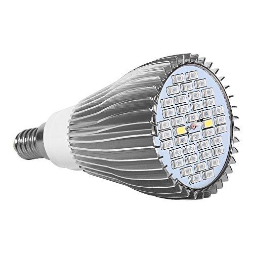 LED Lampe für Wachstum Pflanzen Licht Leuchtmittel Spannklaue Spektrum für Fleur de Gewächshaus Warm und hydroponiques E27GU10E14Für Pflanzen Innen, E14