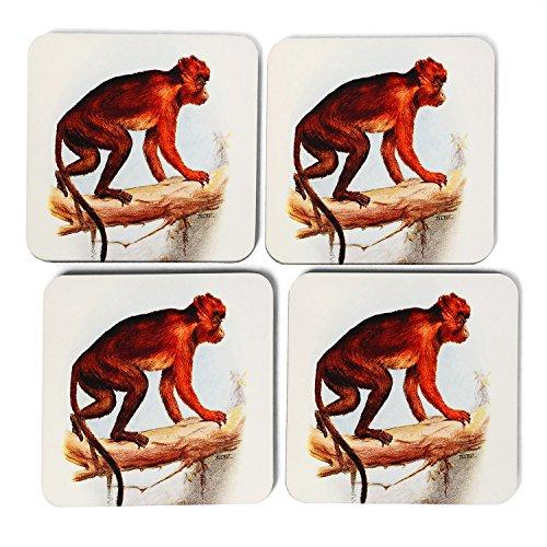 big-box-art-vintage-talbot-red-colobus-monkey-coasters-multi-colour-9-x-9-cm-pack-of-4