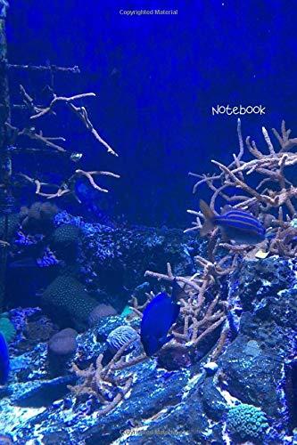 Notebook: Deep sea coral reef journal -