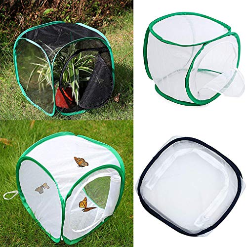 TAOtTAO Tragbare faltbare Insekten- und Schmetterlings-Lebensraum-Käfig-Gehäuse des Gehäuses 2PC Schmetterlingskäfig faltbarer Insektenkäfig-Schmetterlingskäfig (C) - Roach Spray