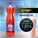 GINGER Aperitiv-Aperitif (Alkoholfrei) San Benedetto (05 Stück à 1,50 Lt)