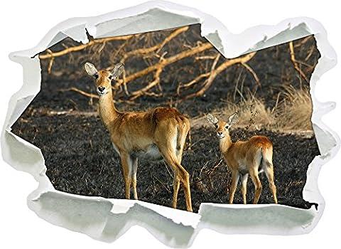 gazelle femelle jeune, papier 3D taille sticker mural: 62x45 cm