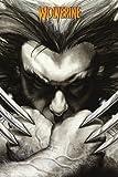 GB eye - Póster de garras de Lobezno de Marvel (61 x 91,5 cm)