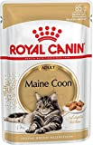 ROYAL CANIN, Maine Coon Adult
